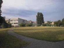L'Istituto A. Greppi